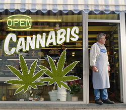 recreational-marijuana-in-colorado.9434820.87-thumb-250x219